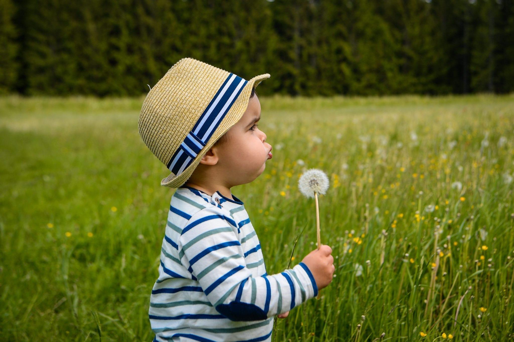 Junger Mann mit Pusteblume