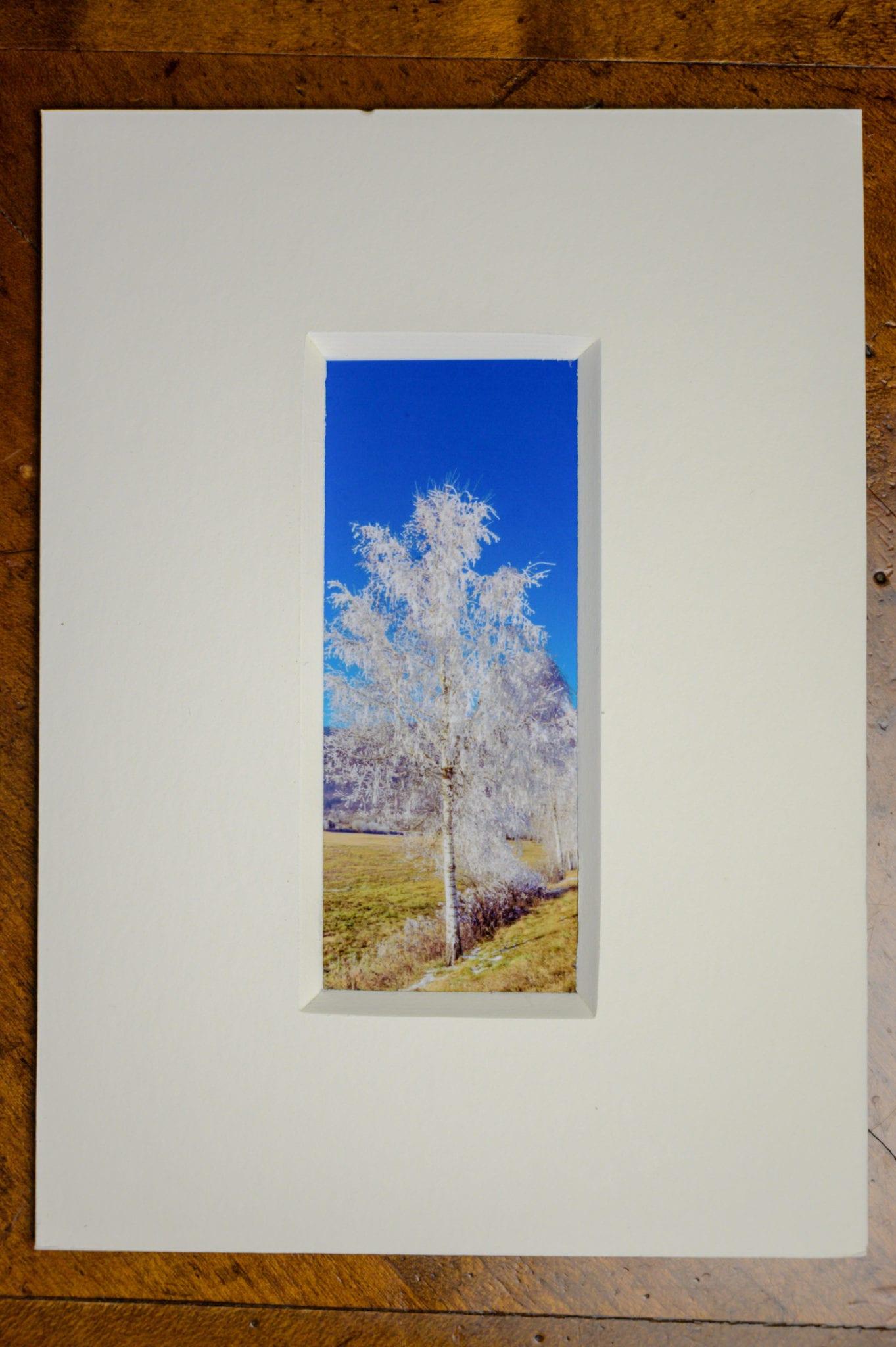 Roland Photography - der Frost